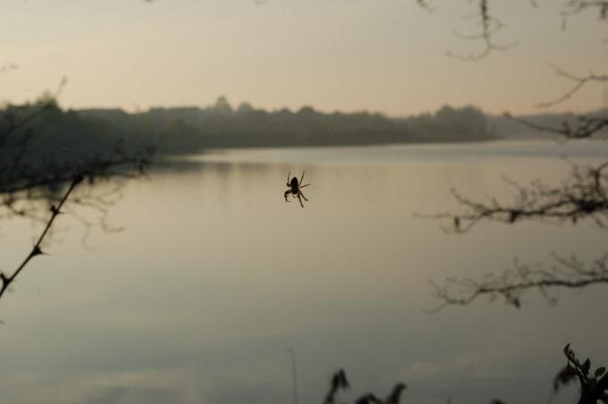 jezioro pajęcze