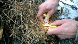 rozpalki-naturalne-sucha-trawa