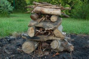 drewno na ognisko pagoda
